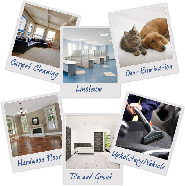 Carpet Cleaning Experts Madison Wi R
