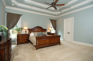 Madison, WI Carpet Cleaning Services