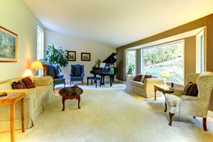 Sun Prairie Carpet Cleaner Living Room