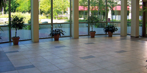 Tile Cleaning In Madison, WI
